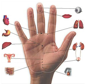 Massage Ring (Chinese Acupressure Ring) - Yin Yang Acupuncture